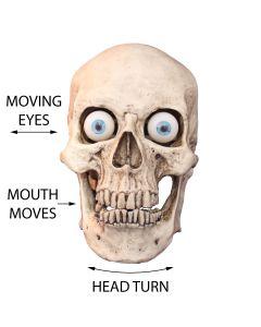 Head Turn Character