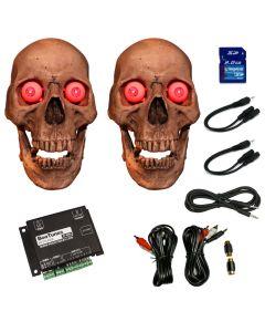 Dual Skull Kit